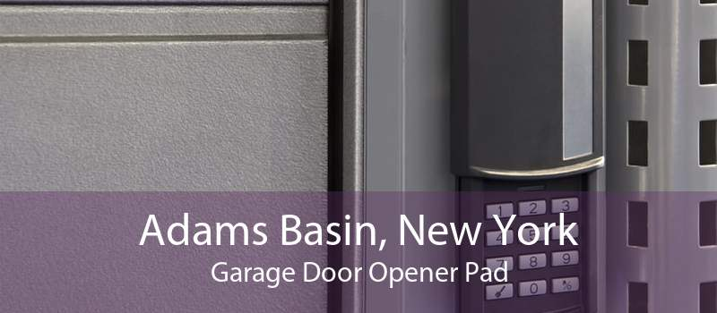 Adams Basin, New York Garage Door Opener Pad