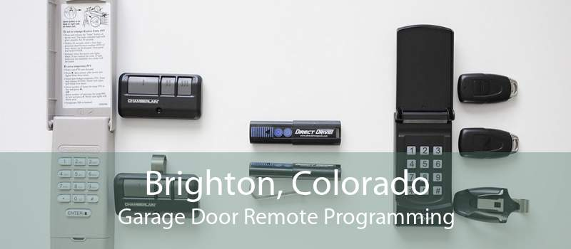 Brighton, Colorado Garage Door Remote Programming