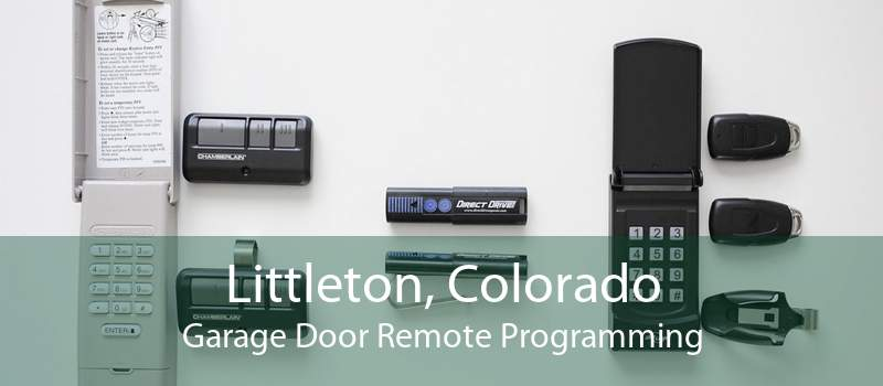 Littleton, Colorado Garage Door Remote Programming